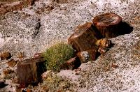 Canyonlands_007