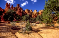 Canyonlands_017