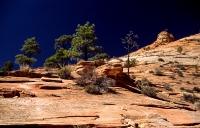 Canyonlands_030