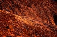 Canyonlands_033