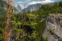 Yellowstone_uA_001