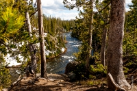 Yellowstone_uA_031