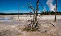 Amerika - USA Yellowstone (2013)