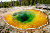 Yellowstone_uA_045