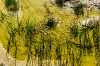 Yellowstone_uA_048