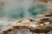 Yellowstone_uA_050