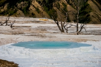 Yellowstone_uA_056