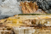 Yellowstone_uA_057