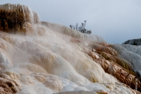 Yellowstone_uA_059