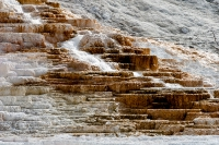 Yellowstone_uA_063