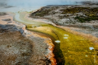 Yellowstone_uA_074