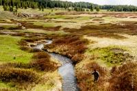 Yellowstone_uA_079