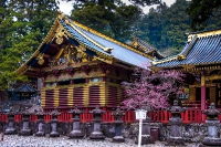 JapanChina_033