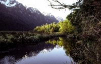 Neuseeland_050